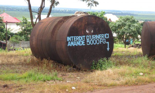 """""""Heimodemokratia"""" – Guinean vaalit ja politiikka Afrikassa"""