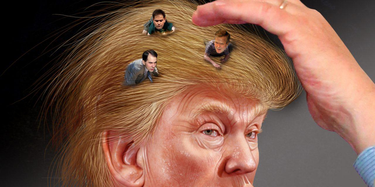 Donald contra mundum: Johdatus republikaanien esivaalitaistoon, osa 3