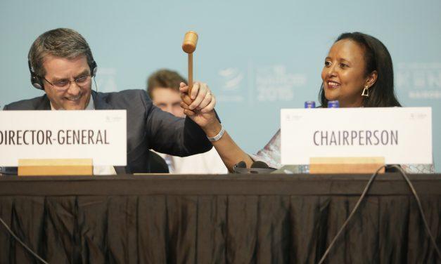 Löytyykö WTO:lle enää käyttöä?