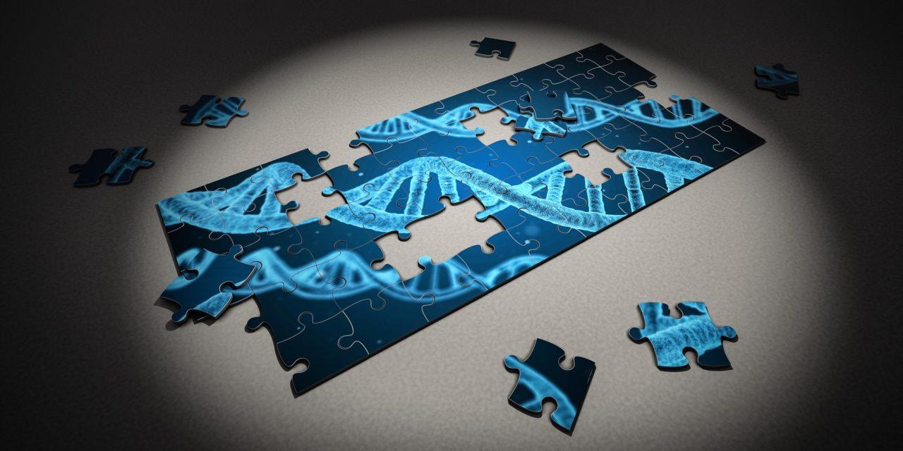 Synteettinen biologia avaa luonnon perusteet ihmisen muokattaviksi – suurien mahdollisuuksien rinnalla tulevat suuret riskit