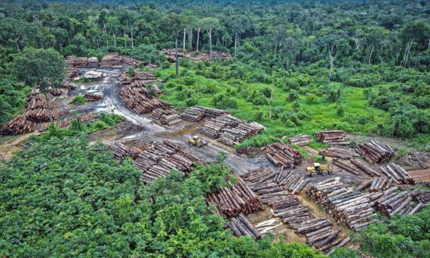 Amazonin palaessa Bolsonaron hallitus tasapainoili skandaalien ja uudistusten välillä