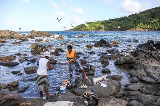 Kriisin kääntöpuoli – Covid-19 ja Karibian voimannäyte