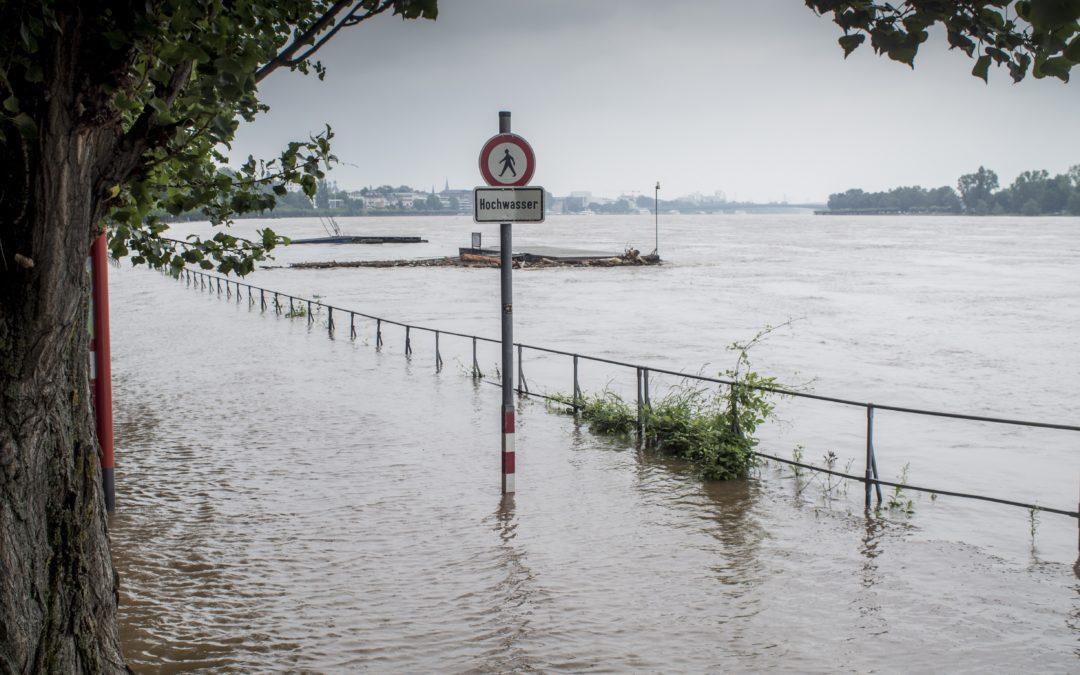 Moottoriteille nopeusrajoitukset ja hiili-exit – Saksan ilmastopolitiikka hakee Merkelin jälkeistä suuntaansa