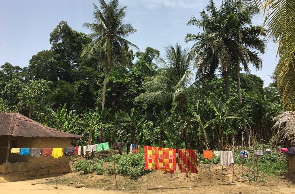 Sierra Leonen vaihtuva valuutta – riippuvuutta kansainvälisestä avusta on vaikea katkaista