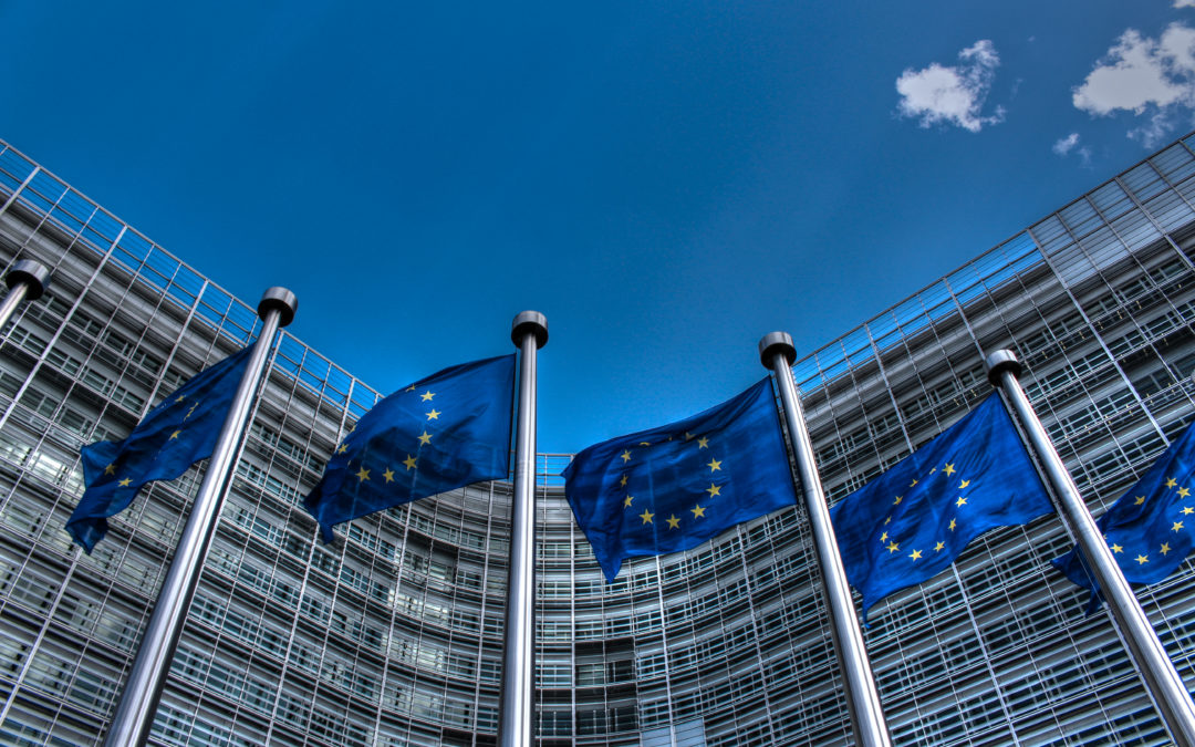 EU on koko maailman Kalifornia, ja Brysselin säännöt ohjaavat maailmaa – mutta onko sillä väliä kriisien ja katastrofien maailmassa?